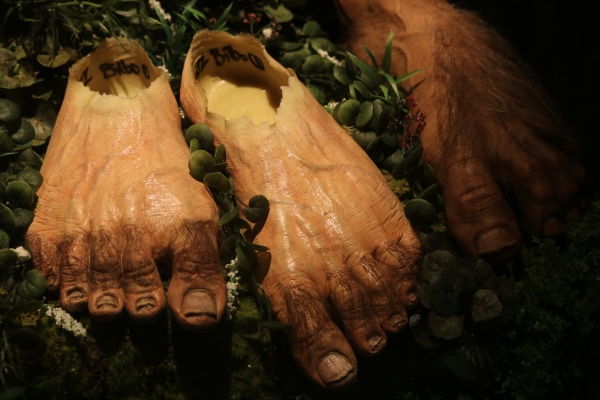 Prosthetic hobbit feet at the Weta Cave, Wellington.